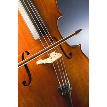 Violoncello HANS JOSEPH SCES2012